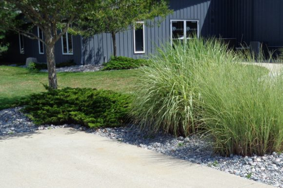 Daavlin Commercial Landscaping